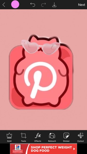 Sharon Machuca's profile image