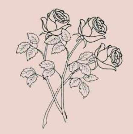 Khooshi Bavishi's profile image