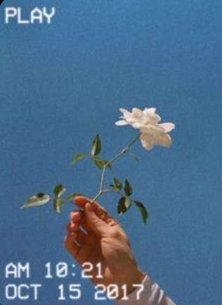 Saquoia 's profile image
