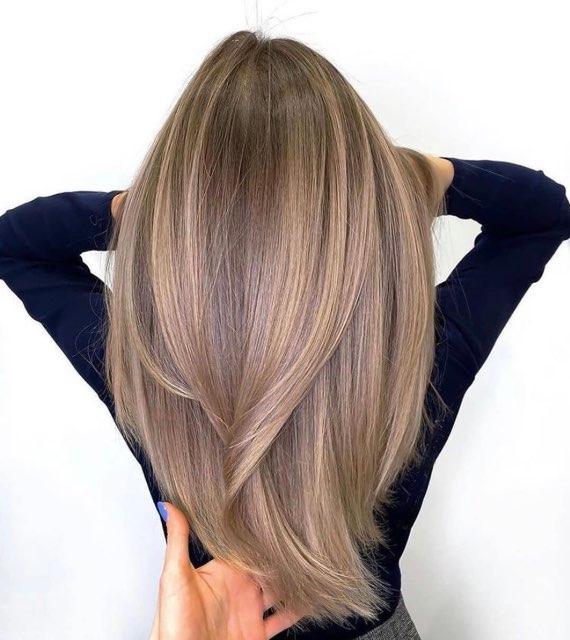 Diane Rego's profile image