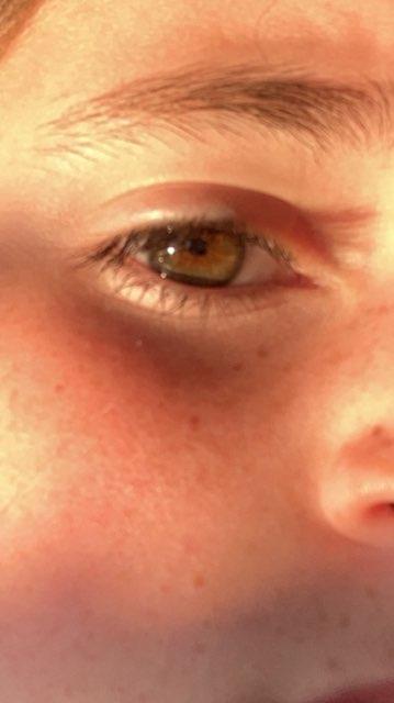 Kaitlyn Mehl's profile image
