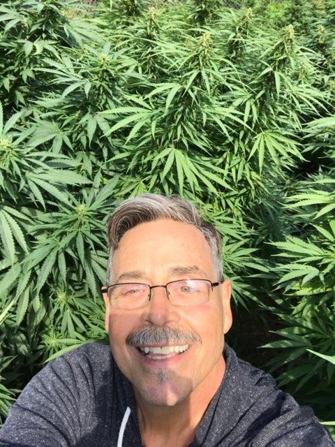 Doug Mason's profile image