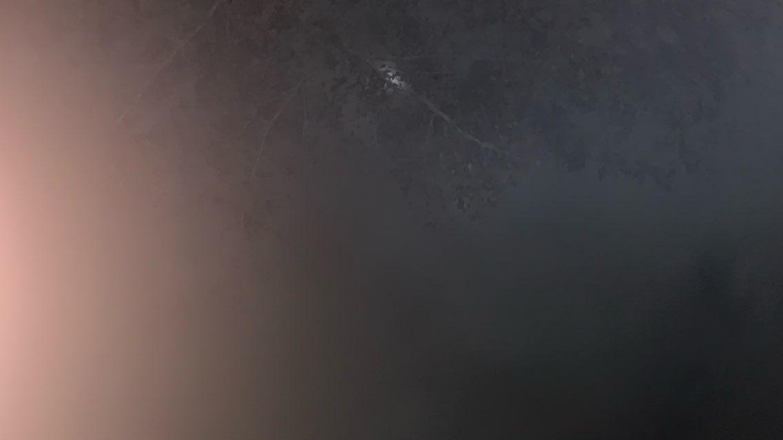 Alohnda morris's profile image
