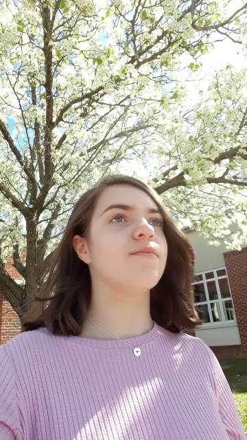 Abigail D. 's profile image