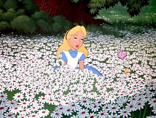 Olivia Roe's profile image