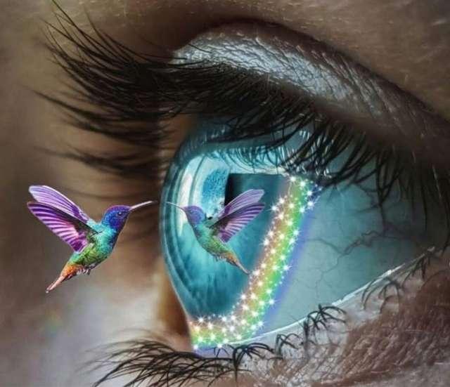 Tonya Lacy's profile image