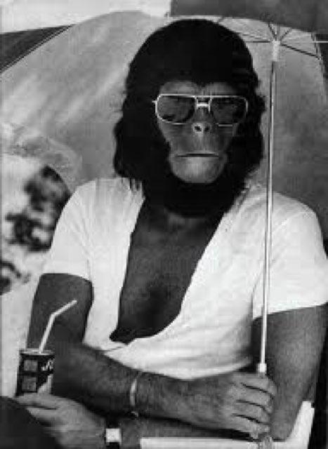 Jeff Einarson's profile image