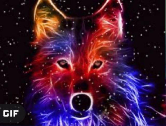 Freya 🤪's profile image