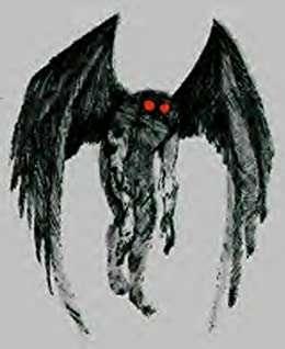 Mothman Prophet's profile image