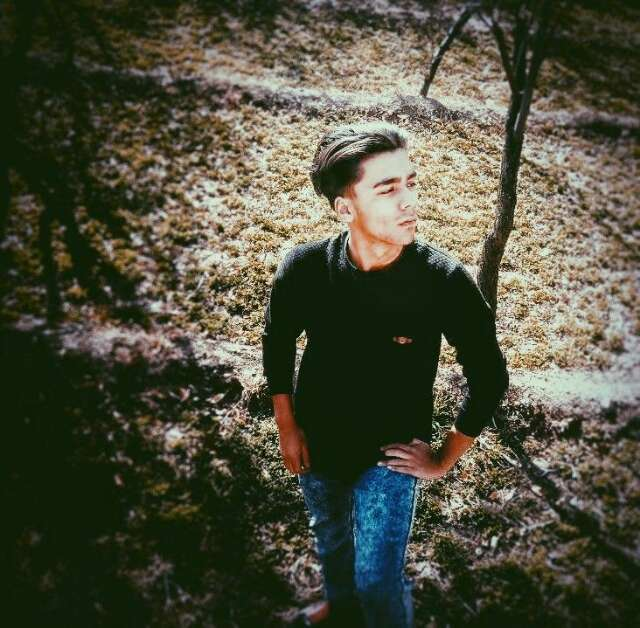 Ali Heravi's profile image