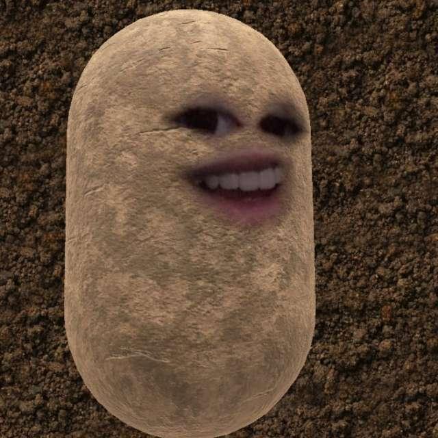 Maya Ashley's profile image