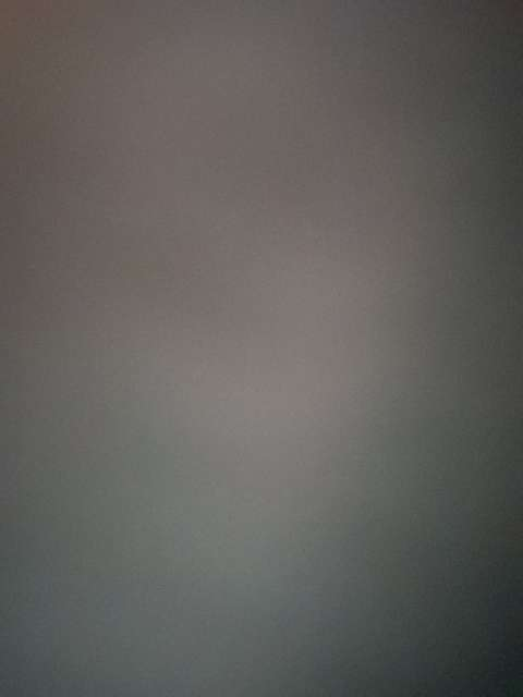 Yael Kranz's profile image