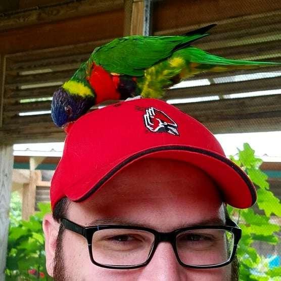 Luke McLaughlin's profile image