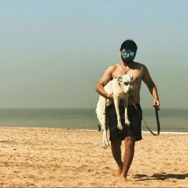 Harsh Parmar's profile image