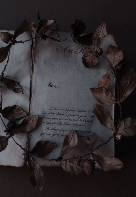 𝑒 𝑙 𝑖 𝑠 𝑒 's profile image