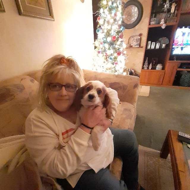 Mary Lynne Roda's profile image