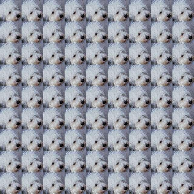 deeka chi's profile image