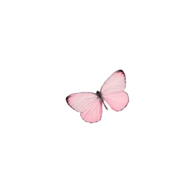 Lyn So's profile image
