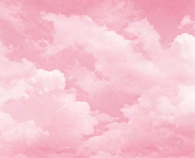 Sky Darling's profile image