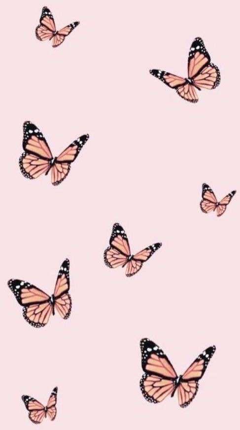 Zhionna 's profile image