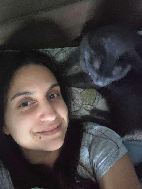 Dahlia 's profile image